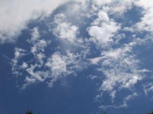 2009-06-23 12.04.10